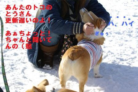 c0116534_046174.jpg