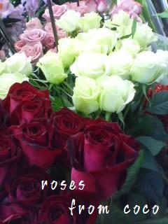 c0130553_17575327.jpg