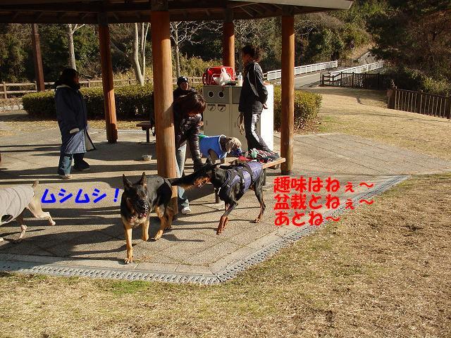a0088086_030340.jpg