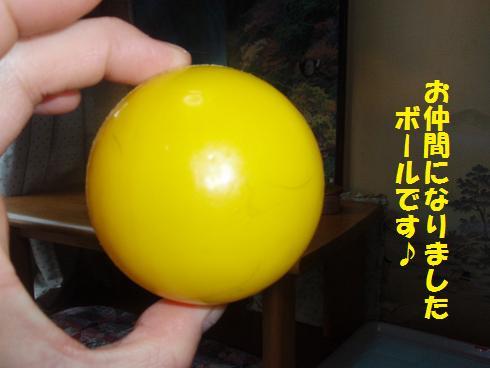 c0151866_20134785.jpg