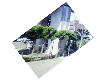 c0055781_93456.jpg
