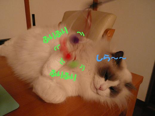 c0117597_13403625.jpg