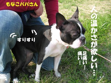 c0092097_16252548.jpg
