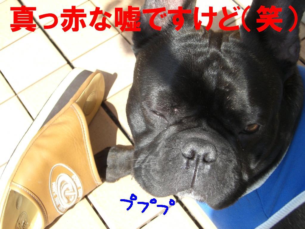 c0113109_141992.jpg