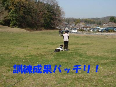 c0120585_9443980.jpg