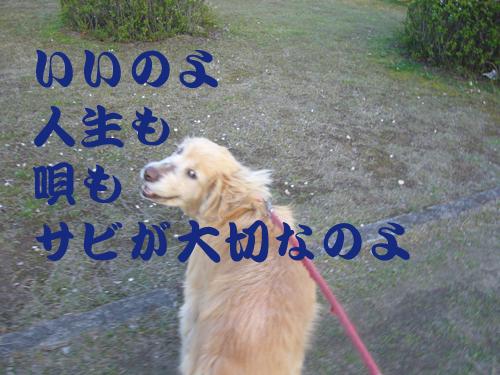 c0085188_20465448.jpg