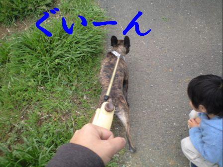 c0130324_23203175.jpg