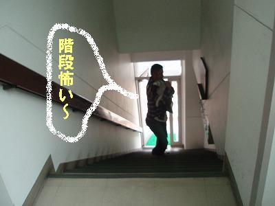c0084706_1271462.jpg