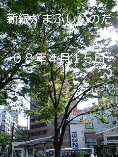 e0045856_19525599.jpg