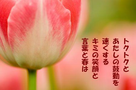 a0043405_15123467.jpg