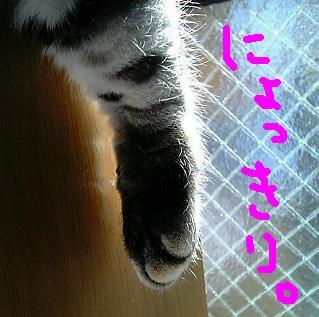 c0142386_20223633.jpg