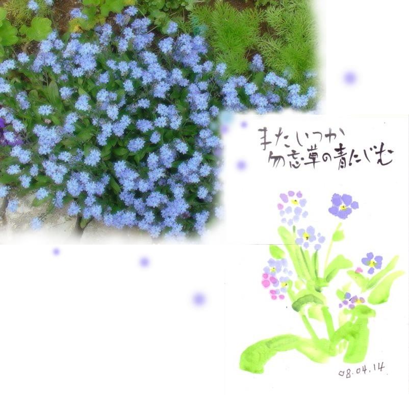 e0074955_1927196.jpg