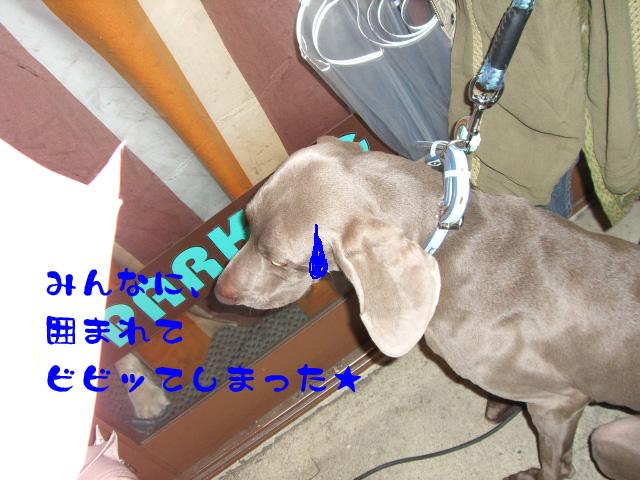 c0122897_13573062.jpg