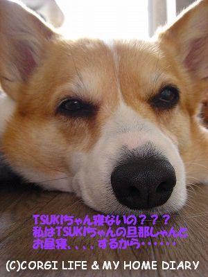 c0153410_20393644.jpg