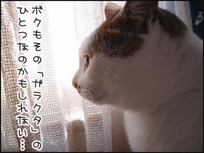a0017960_0415113.jpg