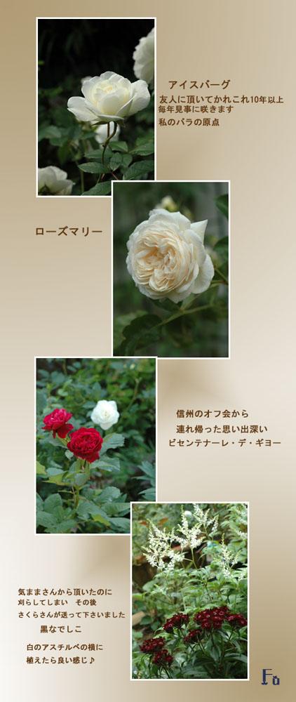 a0073275_20431015.jpg
