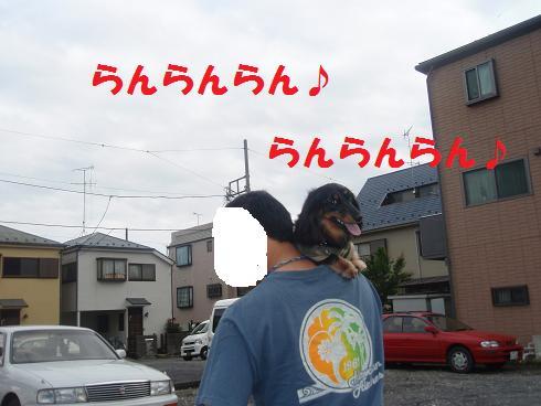 c0151866_2118476.jpg