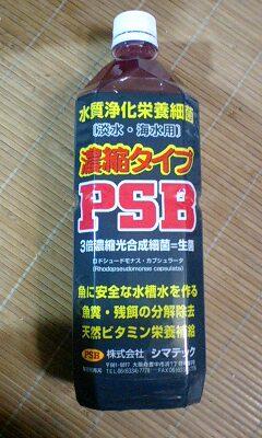 c0147699_051956.jpg