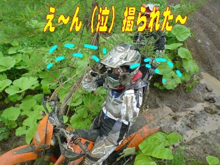 e0022736_1161686.jpg
