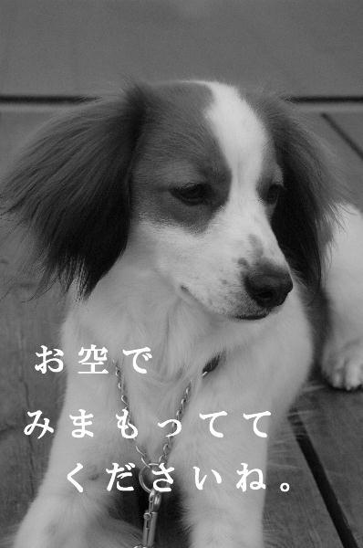 c0075585_0113872.jpg