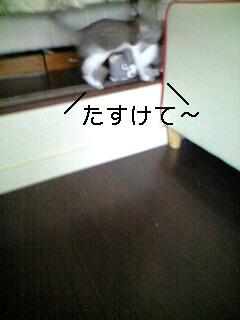 c0047024_1213122.jpg