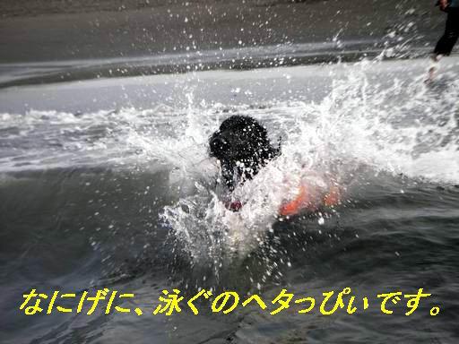 a0104464_12212843.jpg