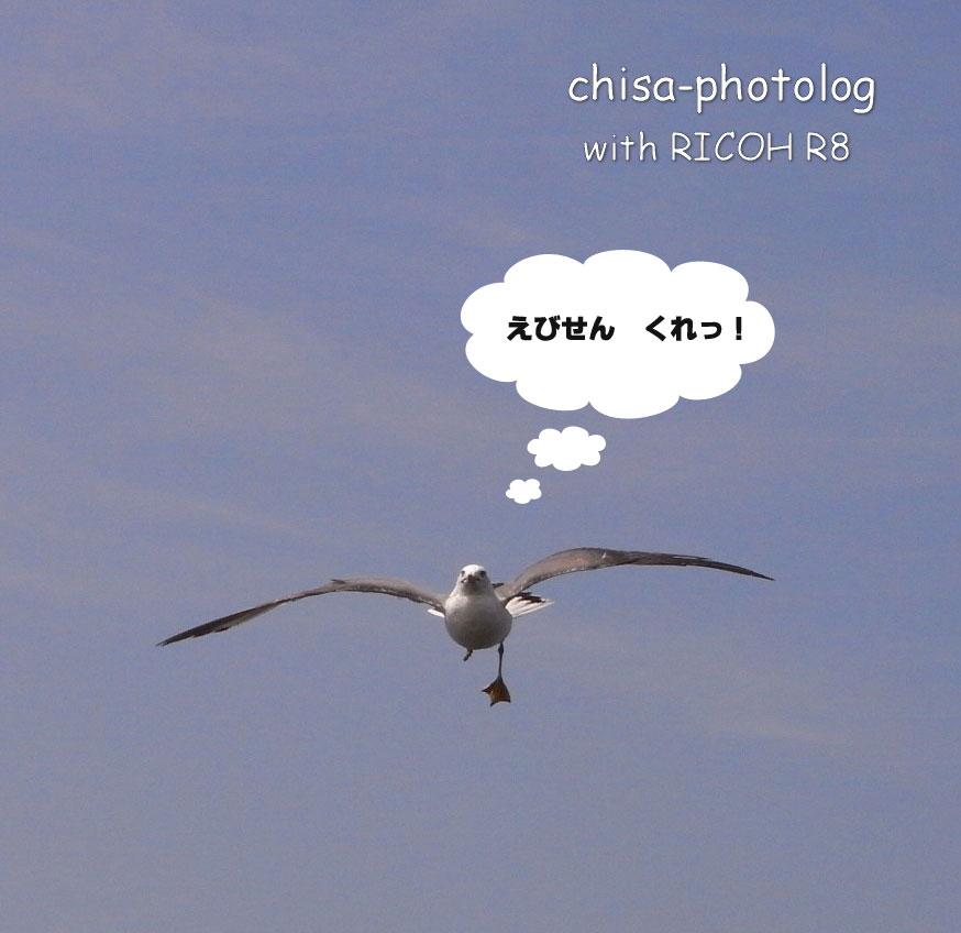 c0158998_10113382.jpg