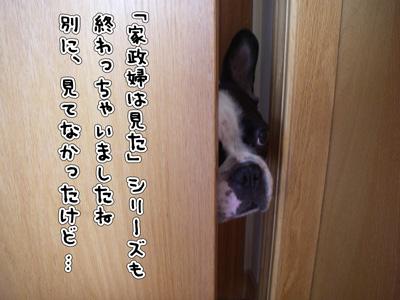 e0008833_8215526.jpg