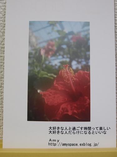 c0077361_103574.jpg