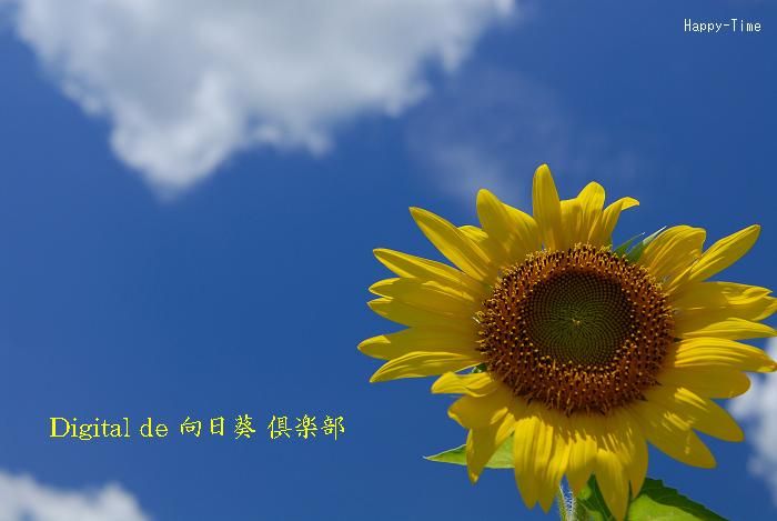 c0118545_13311612.jpg