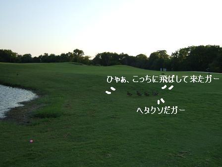 e0014447_131963.jpg