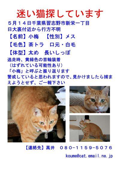 c0150520_053858.jpg