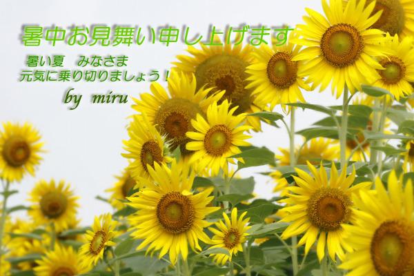 c0037519_995521.jpg