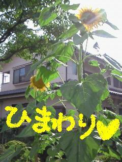 c0134720_17213060.jpg