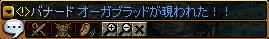 c0081097_2051551.jpg