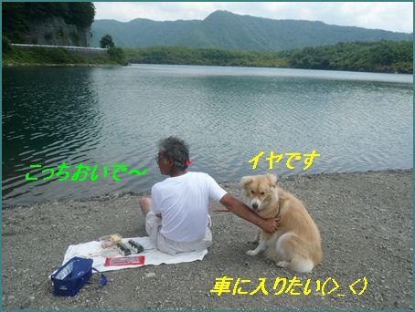 a0100160_11321789.jpg
