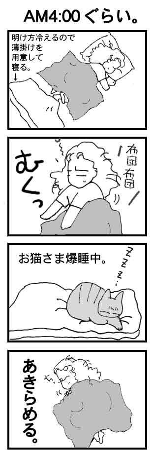 a0038698_033042.jpg