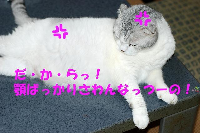 c0116921_17463480.jpg