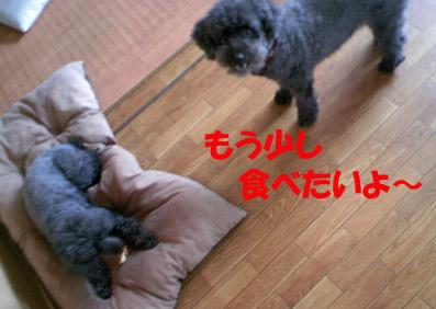 e0013900_13395960.jpg