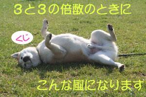 c0166018_056136.jpg