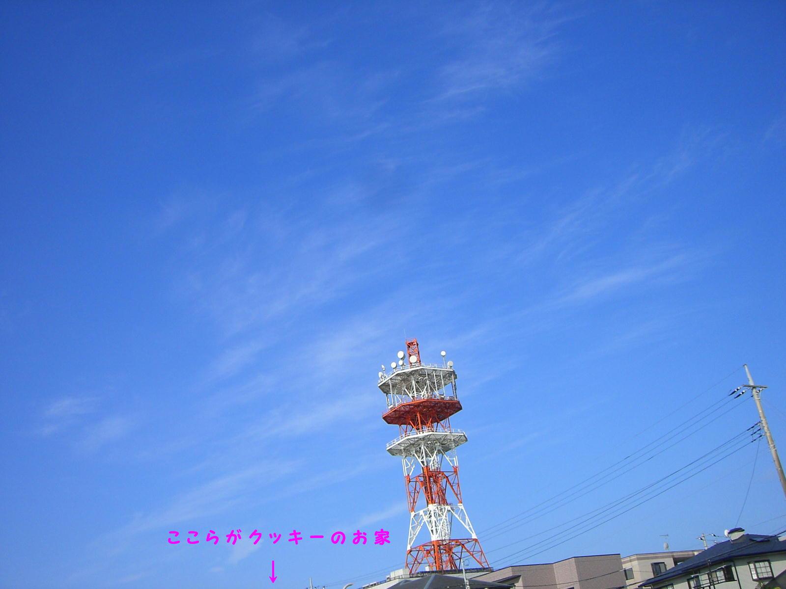 e0059197_10585180.jpg
