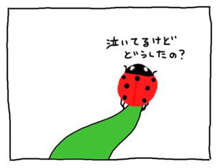 a0093189_15295810.jpg