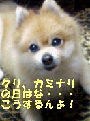 c0179136_1285052.jpg
