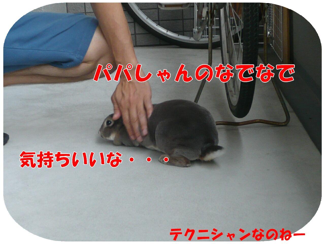 c0151439_14353214.jpg