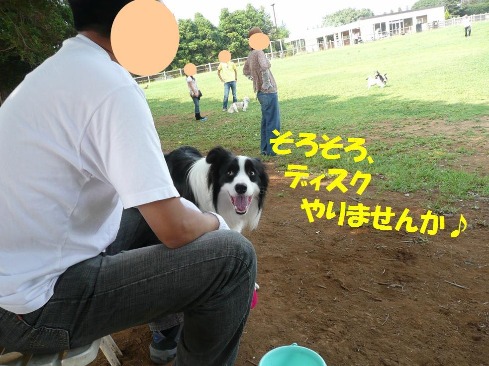 c0147241_86423.jpg