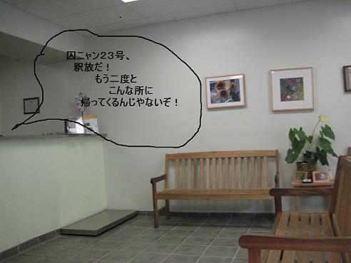 c0132537_8501597.jpg