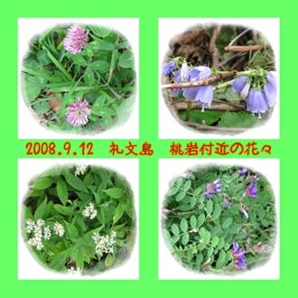 a0052666_18391881.jpg