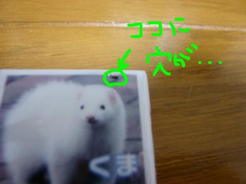 c0165472_12263016.jpg