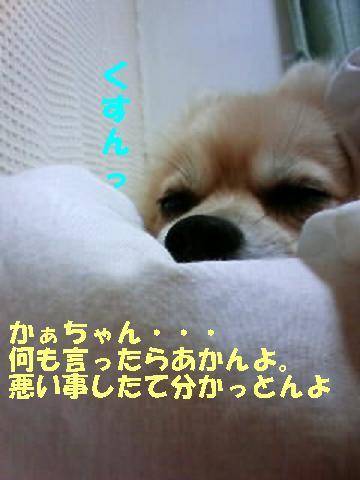 c0179136_22491815.jpg