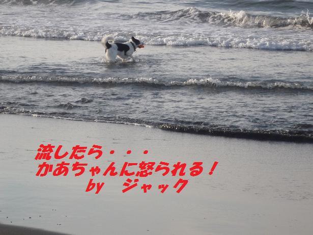 a0104464_11332136.jpg